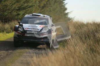 © North One Sport Ltd 2011 / Octane Photographic Ltd 2011. 13th November 2011 Wales Rally GB, WRC SS21 Halfway. Ott Tanak in his DMack tyre equipped Ford Fiesta RS WRC. Digital Ref : 0200CB1D9748