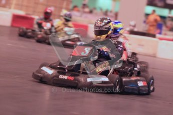 © Octane Photographic Ltd. 2012. Autosport International 2012 Celebrity Karting for the Race To Recovery charity. 12th January 2012. Digital Ref : 0206cb1d1558