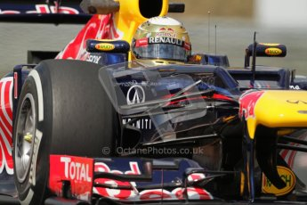 © 2012 Octane Photographic Ltd. Hungarian GP Hungaroring - Friday 27th July 2012 - F1 Practice 2. Red Bull RB8 - Sebastian Vettel. Digital Ref : 0426lw7d5181