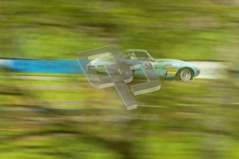 © Octane Photographic Ltd. 2012 Donington Historic Festival. E-type Challenge, qualifying. Jaguar E-type - Harry Wyndham. Digital Ref : 0317cb1d8157