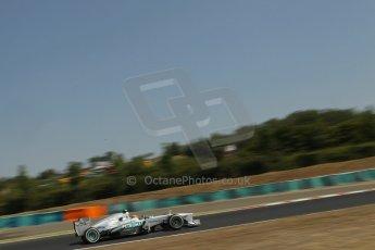 World © Octane Photographic Ltd. F1 Hungarian GP - Hungaroring, Saturday 27th July 2013 - Practice 3. Mercedes AMG Petronas F1 W04 – Lewis Hamilton. Digital Ref : 0763lw1d0950