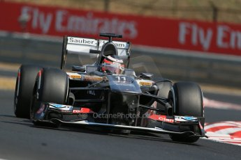World © Octane Photographic Ltd. F1 Hungarian GP - Hungaroring, Saturday 27th July 2013 - Practice 3. Sauber C32 - Nico Hulkenberg. Digital Ref : 0763lw1d3100