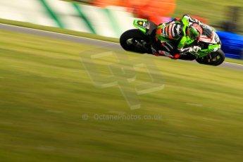 World © Octane Photographic Ltd. World Superbikes (SBK) European GP – Donington Park – Free Practice. Kawasaki Racing Team – Kawasaki ZX-10R – Tom Sykes. Saturday 25th May 2013. Digital Ref : 0698ce1d3523
