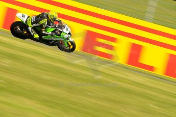 World © Octane Photographic Ltd. World Superbikes (SBK) European GP – Donington Park – Free Practice. Team Pedercini – Kawasaki ZX-10R – Alexander Lundh. Saturday 25th May 2013. Digital Ref : 0698ce1d3536