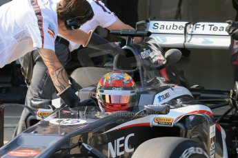 World © Octane Photographic Ltd. Formula 1 - Young Driver Test - Silverstone. Thursday 18th July 2013. Day 2. Sauber C32 - Robin Frijns. Digital Ref : 0753lw1d9180