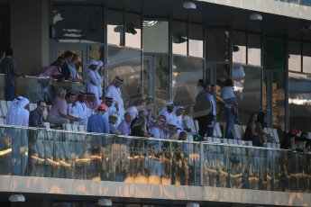 World © Octane Photographic Ltd. Saturday 22nd November 2014. Abu Dhabi Grand Prix - Yas Marina Circuit - Formula 1 Qualifying. Fans. Digital Ref: 1166LB1D1068