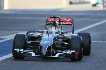 World © Octane Photographic Ltd. Wednesday 26th  November 2014. Abu Dhabi Testing - Yas Marina Circuit. Sauber C33 – Marcus Ericsson. Digital Ref : 1175LB1D8690