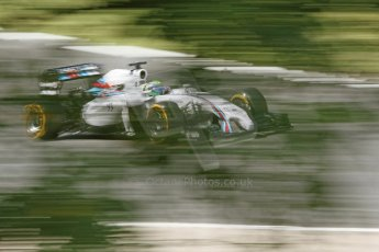 World © Octane Photographic Ltd. Friday 25th July 2014. Hungarian GP, Hungaroring - Budapest. - Formula 1 Practice 2. Williams Martini Racing FW36 – Felipe Massa. Digital Ref: 1057CB7D6934