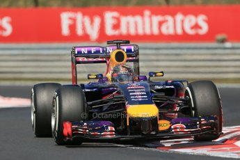 World © Octane Photographic Ltd. Friday 25th July 2014. Hungarian GP, Hungaroring - Budapest. Formula 1 Practice 2. Infiniti Red Bull Racing RB10 - Sebastian Vettel. Digital Ref: 1057LB1D0386