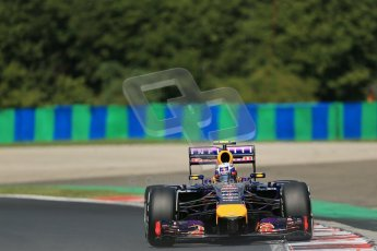 World © Octane Photographic Ltd. 2014 Saturday 26th July 2014. Hungarian GP, Hungaroring - Budapest. Practice 3. Infiniti Red Bull Racing RB10 – Daniel Ricciardo. Digital Ref: 1064LB1D1141