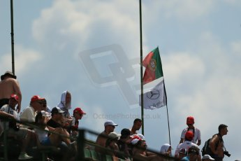 World © Octane Photographic Ltd. Saturday 26th July 2014. Hungarian GP, Hungaroring - Budapest. Practice 3. Mercedes fans . Digital Ref : 1064LB1D1776