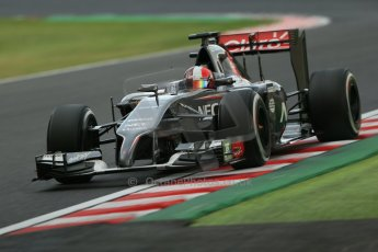 World © Octane Photographic Ltd. Friday 3rd October 2014, Japanese Grand Prix - Suzuka. - Formula 1 Practice 2. Sauber C33 – Adrian Sutil. Digital Ref: