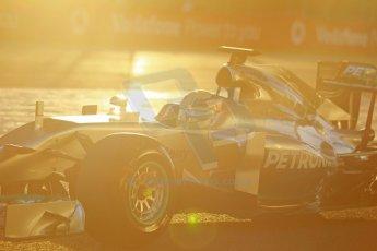 World © Octane Photographic Ltd. 2014 Formula 1 Winter Testing, Circuito de Velocidad, Jerez. Tuesday 28th January 2014. Day 1. Mercedes AMG Petronas F1 W05 – Lewis Hamilton. Digital Ref: 0882cb1d9299