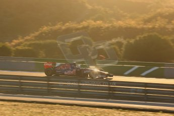 World © Octane Photographic Ltd. 2014 Formula 1 Winter Testing, Circuito de Velocidad, Jerez. Thursday 30th January 2014. Day 3. Scuderia Toro Rosso STR9 - Jean-Eric Vergne. Digital Ref: 0887lb1d1667