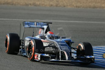 World © Octane Photographic Ltd. 2014 Formula 1 Winter Testing, Circuito de Velocidad, Jerez. Thursday 30th January 2014. Day 3. Sauber C33 – Adrian Sutil. Digital Ref: 0887lb1d2217