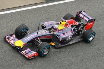 World © Octane Photographic Ltd. 2014 Formula 1 Winter Testing, Circuito de Velocidad, Jerez. Friday 31st January 2014. Day 4. Infiniti Red Bull Racing RB10 – Daniel Ricciardo. Digital Ref: 0888cb1d1496