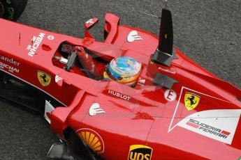 World © Octane Photographic Ltd. 2014 Formula 1 Winter Testing, Circuito de Velocidad, Jerez. Friday 31st January 2014. Day 4. Scuderia Ferrari F14T - Fernando Alonso. Digital Ref: 0888cb1d1517