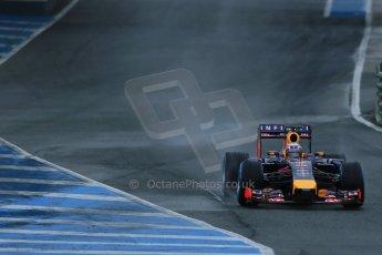 World © Octane Photographic Ltd. 2014 Formula 1 Winter Testing, Circuito de Velocidad, Jerez. Friday 31st January 2014. Day 4. Infiniti Red Bull Racing RB10 – Daniel Ricciardo. Digital Ref: 0888lb1d2764