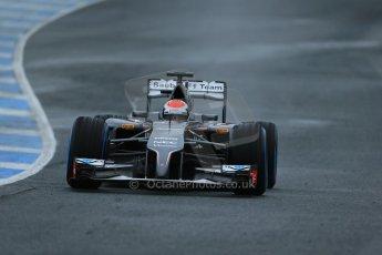 World © Octane Photographic Ltd. 2014 Formula 1 Winter Testing, Circuito de Velocidad, Jerez. Friday 31st January 2014. Day 4. Sauber C33 Ferrari – Adrian Sutil. Digital Ref: 0888lb1d2926