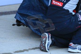 World © Octane Photographic Ltd. 2014 Formula 1 Winter Testing, Circuito de Velocidad, Jerez. Tuesday 27th January 2014. Day 1. Infiniti Red Bull Racing RB10 launch. Digital Ref: 0885lb1d9736