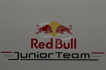 World © Octane Photographic Ltd. World Series by Renault collective test, Jerez de la Frontera, March 24th 2014. Red Bull Junior Team logo. Digital Ref :  0897cb1d4461