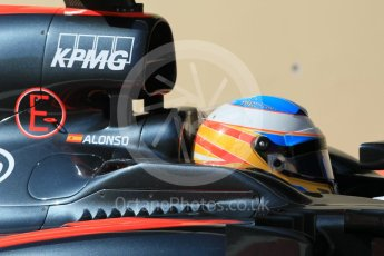 World © Octane Photographic Ltd. McLaren Honda MP4/30 – Fernando Alonso. Friday 27th November 2015, F1 Abu Dhabi Grand Prix, Practice 1, Yas Marina. Digital Ref: 1477CB1L5084