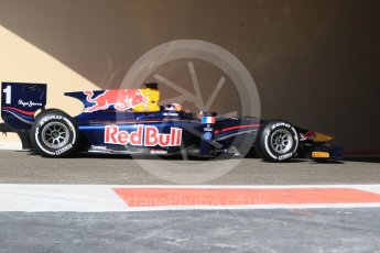 World © Octane Photographic Ltd. Friday 27th November 2015. DAMS – Pierre Gasly. GP2 Practice, Yas Marina, Abu Dhabi. Digital Ref. : 1476CB7D1559