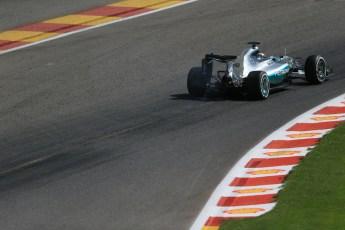 World © Octane Photographic Ltd. Mercedes AMG Petronas F1 W06 Hybrid – Lewis Hamilton. Saturday 22nd August 2015, F1 Belgian GP Qualifying, Spa-Francorchamps, Belgium. Digital Ref: 1382LB1D0330