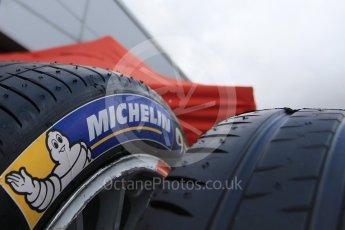 World © Octane Photographic Ltd. FIA Formula E testing – Donington Park 10th August 2015, Michelin tyres. Digital Ref : 1366LB7D4353