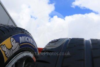 World © Octane Photographic Ltd. FIA Formula E testing – Donington Park 10th August 2015, Michelin tyres. Digital Ref : 1366LB7D4359
