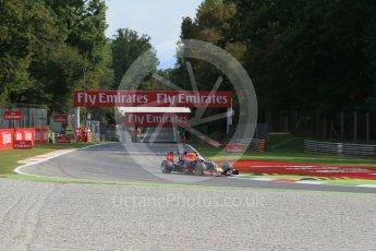 World © Octane Photographic Ltd. Infiniti Red Bull Racing RB11 – Daniel Ricciardo. Friday 4th September 2015, F1 Italian GP Practice 1, Monza, Italy. Digital Ref: 1405LB1D8717