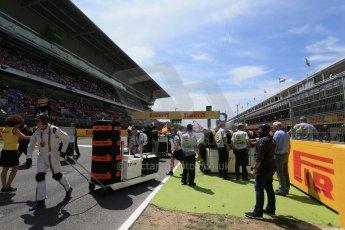 World © Octane Photographic Ltd. Sunday 10th May 2015, F1 Spanish GP Formula 1 Grid, Circuit de Barcelona-Catalunya, Spain. Digital Ref: 1264LB1D0096