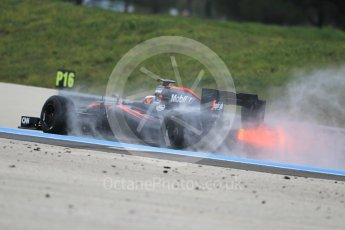 World © Octane Photographic Ltd. Pirelli wet tyre test, Paul Ricard, France. Monday 25th January 2016. McLaren Honda MP4/30 – Stoffel Vandoorne. Digital Ref: 1498CB1D8826