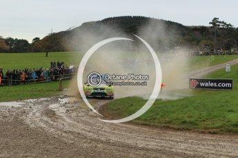© North One Sport Limited 2010/ Octane Photographic Ltd. 2010 WRC Great Britain, Sunday 14th November 2010. Digital ref : 0120lw1d0066