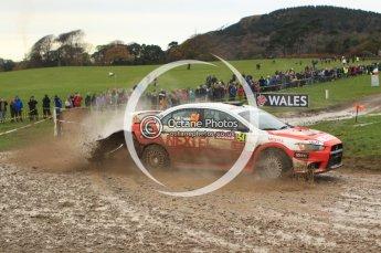 © North One Sport Limited 2010/ Octane Photographic Ltd. 2010 WRC Great Britain, Sunday 14th November 2010. Digital ref : 0120lw1d0420