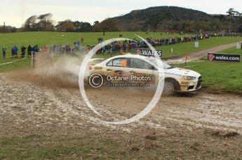 © North One Sport Limited 2010/ Octane Photographic Ltd. 2010 WRC Great Britain, Sunday 14th November 2010. Digital ref : 0120lw1d0432