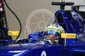 World © Octane Photographic Ltd. Sauber F1 Team C35 – Marcus Ericsson. Saturday 26th November 2016, F1 Abu Dhabi GP - Practice 3, Yas Marina circuit, Abu Dhabi. Digital Ref :