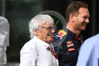 World © Octane Photographic Ltd. Bernie Ecclestone and Christian Horner - Red Bull Racing. Saturday 26th November 2016, F1 Abu Dhabi GP - Paddock, Yas Marina circuit, Abu Dhabi. Digital Ref : 1764LB1D9573