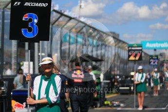 World © Octane Photographic Ltd. Red Bull Racing – Daniel Ricciardo. Sunday 20th March 2016, F1 Australian GP - Grid, Melbourne, Albert Park, Australia. Digital Ref : 1523LB1D6611