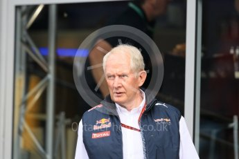 World © Octane Photographic Ltd. Red Bull Racing - Dr.Helmut Marko. Friday 1st July 2016, F1 Austrian GP Practice 1, Red Bull Ring, Spielberg, Austria. Digital Ref : 1598CB1D1818