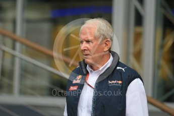 World © Octane Photographic Ltd. Red Bull Racing - Dr.Helmut Marko. Friday 1st July 2016, F1 Austrian GP Practice 1, Red Bull Ring, Spielberg, Austria. Digital Ref : 1598CB1D1828
