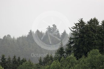 World © Octane Photographic Ltd. Rain in the trees. Friday 1st July 2016, F1 Austrian GP Practice 2, Red Bull Ring, Spielberg, Austria. Digital Ref : 1600LB1D6484