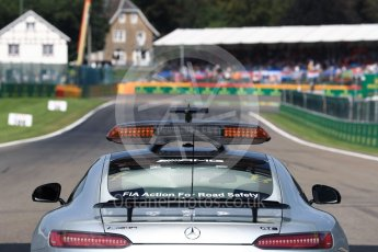 World © Octane Photographic Ltd. View to Turn 1 from the grid. Sunday 28th August 2016, F1 Belgian GP Driver Parade, Spa-Francorchamps, Belgium. Digital Ref : 1691LB1D1990