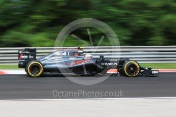 World © Octane Photographic Ltd. McLaren Honda MP4-31 – Jenson Button. Friday 22nd July 2016, F1 Hungarian GP Practice 1, Hungaroring, Hungary. Digital Ref :