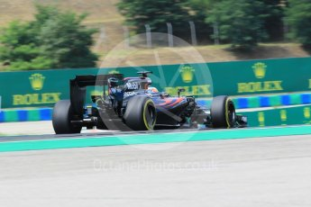 World © Octane Photographic Ltd. McLaren Honda MP4-31 – Fernando Alonso. Friday 22nd July 2016, F1 Hungarian GP Practice 2, Hungaroring, Hungary. Digital Ref : 1641CB1D6913