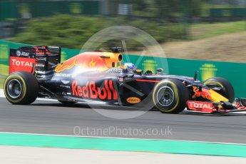 World © Octane Photographic Ltd. Red Bull Racing RB12 – Daniel Ricciardo. Friday 22nd July 2016, F1 Hungarian GP Practice 2, Hungaroring, Hungary. Digital Ref : 1641CB1D6962