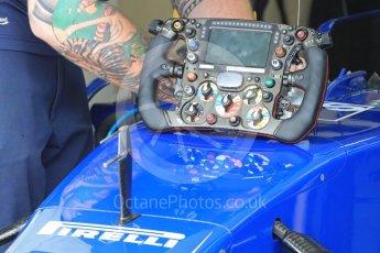 World © Octane Photographic Ltd. Sauber F1 Team C35. Saturday 23rd July 2016, F1 Hungarian GP Practice 3, Hungaroring, Hungary. Digital Ref : 1647LB1D2978