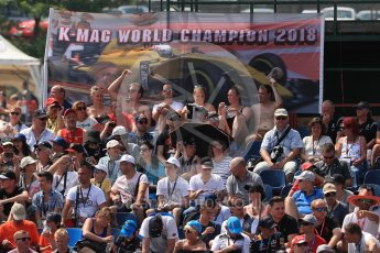 World © Octane Photographic Ltd. Renault Sport F1 Team - Kevin Magnussen fans. Saturday 23rd July 2016, F1 Hungarian GP Practice 3, Hungaroring, Hungary. Digital Ref : 1647LB1D3483
