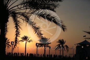 World © Octane Photographic Ltd. Formula 1 - Abu Dhabi Grand Prix - Friday - Practice 2. Fans with the setting sun behind them. Yas Marina Circuit, Abu Dhabi. Friday 24th November 2017. Digital Ref: 2003LB2D8487