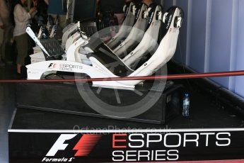 World © Octane Photographic Ltd. GP3 - Practice. F1 eSports series. Abu Dhabi Grand Prix, Yas Marina Circuit. Friday 24th November 2017. Digital Ref:1999LB5D9626
